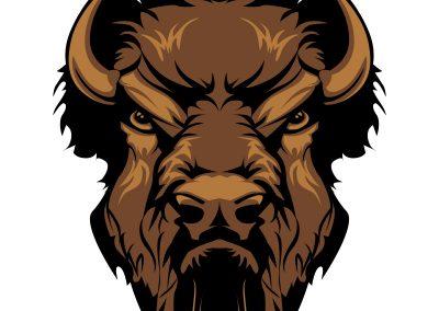 Buffalo - 1