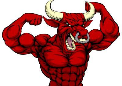 Bull - 1
