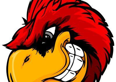 Cardinal - 1