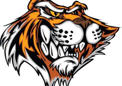 Tiger - 1