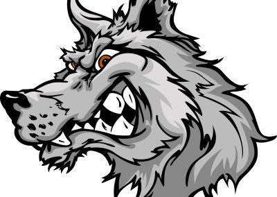 Wolf - 1